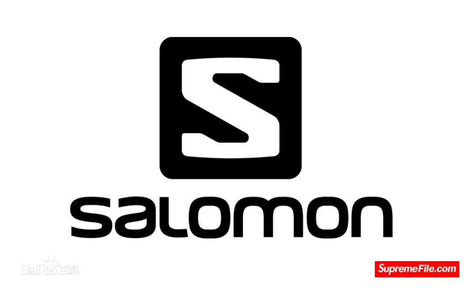 SALOMON  阿尔卑斯山脉中心地带的全球顶级户外运动品牌